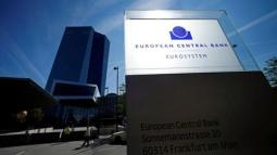ECB policy seen effective, so only minor tweaks coming: ECB and central bank sources