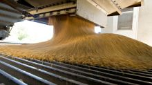 Glencore Hunts Among U.S. Grain Traders for Next Takeover