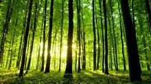 Hedge Funds Are Dumping Universal Forest Products, Inc. (UFPI): What Are They Afraid Of?