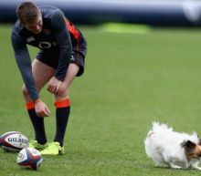 England train ahead of Italy Six Nations clash with help of Jonny Wilkinson - and Eddie Jones' dog